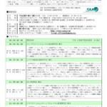 2011研究大会チラシ212x300